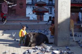OMi_Nepal_2013_170